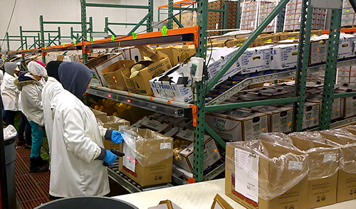 order fulfillment solutions, e-commerce order fulfillment, piece picking, order picking, store replenishment, kitting and sequencing, reverse logistics, returns management, multimodal order picking, light-directed picking, light-directed putting, voice picking, pick-to-light, put-to-light, cart picking, batch picking, multi-order picking, put wall, pack wall